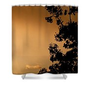Spring Maple Silhouette Shower Curtain