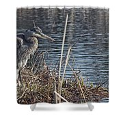 Spring Morning At The Marsh Shower Curtain