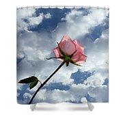 Spring Morning Shower Curtain