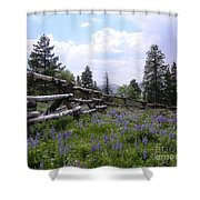 Spring Mountain Lupines 2 Shower Curtain
