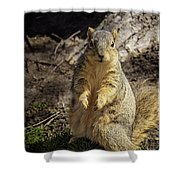 Spring Nature At Spnc Shower Curtain