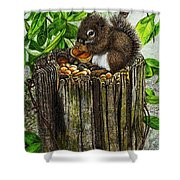 Spring Nuts Shower Curtain