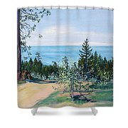 Spring Olive Grove And Pathway To The Sea Shower Curtain