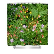 Spring On The Forest Floor Shower Curtain