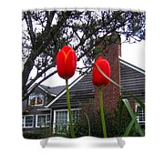 Spring On The Oregon Coast Shower Curtain by Will Borden