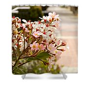 Spring On The Street Shower Curtain