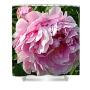 Spring Peony Shower Curtain