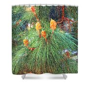 Spring Pine Shower Curtain