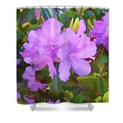 Spring Pink Azalea Shower Curtain