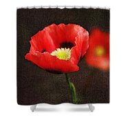 Spring Poppies Shower Curtain