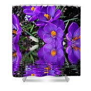 Spring Reflection Shower Curtain