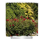 Spring Roses Shower Curtain