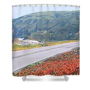 Spring, Route 1, California Coast Shower Curtain