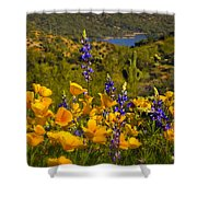 Spring Southwest Style  Shower Curtain