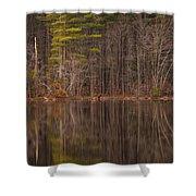 Spring Stillness Shower Curtain