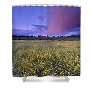 Spring Storm At Andalucia Shower Curtain