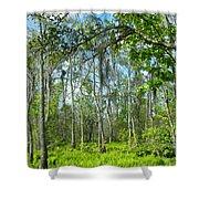 Spring Swamp Shower Curtain