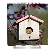 Spring Time Bird House Shower Curtain