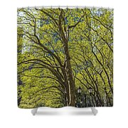 Spring Time In Bryant Park New York Shower Curtain