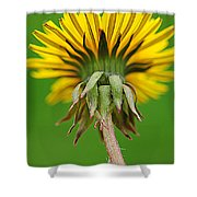 Spring To Life Shower Curtain