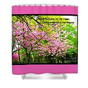 Spring Tree Blossoms Shower Curtain