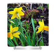 Spring Trinity Shower Curtain