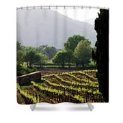 Spring Vines In Provence Shower Curtain