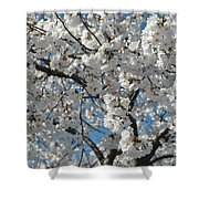 Spring White Shower Curtain