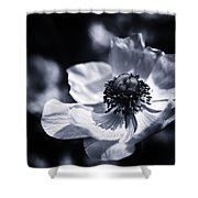 Spring White Dancing Shower Curtain