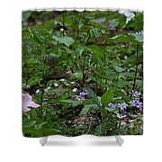 Spring Wildflowers Along Panther Branch Trail Frozen Head Tennessee State Park Tennessee Shower Curtain