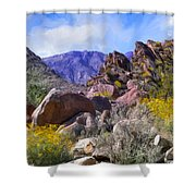 Spring Wildflowers At Anza Borrego Shower Curtain