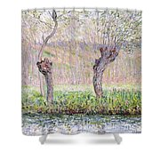 Spring Willows Shower Curtain