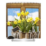 Spring Window Shower Curtain by Amanda Elwell