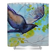 Spring Wings Shower Curtain