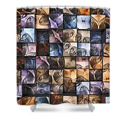 Springs And Squares Shower Curtain