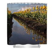Springs Beautiful Reflection Shower Curtain
