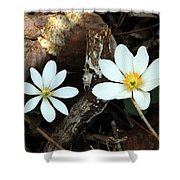 Spring's Bloom Shower Curtain