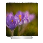 Springs Delicate Richness Shower Curtain by Mike Reid