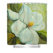 Spring's First Magnolia 2 Shower Curtain