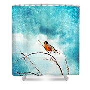Spring's First Robin Shower Curtain