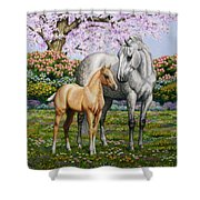Spring's Gift - Mare And Foal Shower Curtain