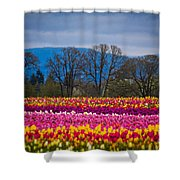 Spring's Laugh Shower Curtain