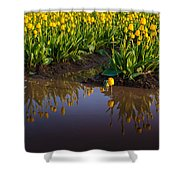 Springs Reflection Shower Curtain