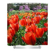 Springs Song  Shower Curtain