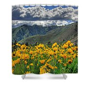 Springtime At Gallagher Shower Curtain