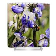 Springtime Bluebonnet Shower Curtain