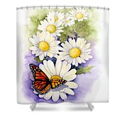Springtime Daisies  Shower Curtain