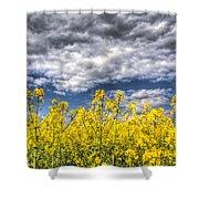 Springtime In England Shower Curtain