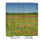 Springtime In Texas 2 Shower Curtain