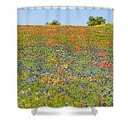 Springtime In Texas 5 Shower Curtain